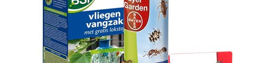 Insecten & beestjes