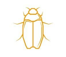 Tapijtkevers