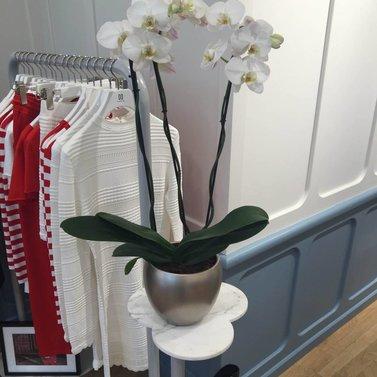 orchid! #NIKKIE #BrandStore #Antwerpen #KorteGasthuisstraat15