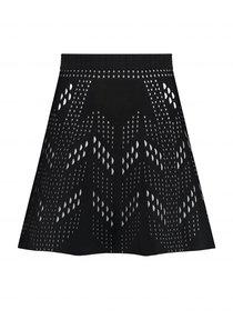 Jane Skylar Skirt
