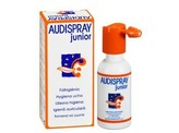Audi Audi spray junior