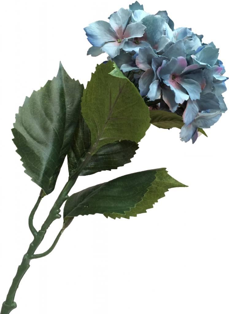 GeWoon Blauwe hortensia 80 cm s-2