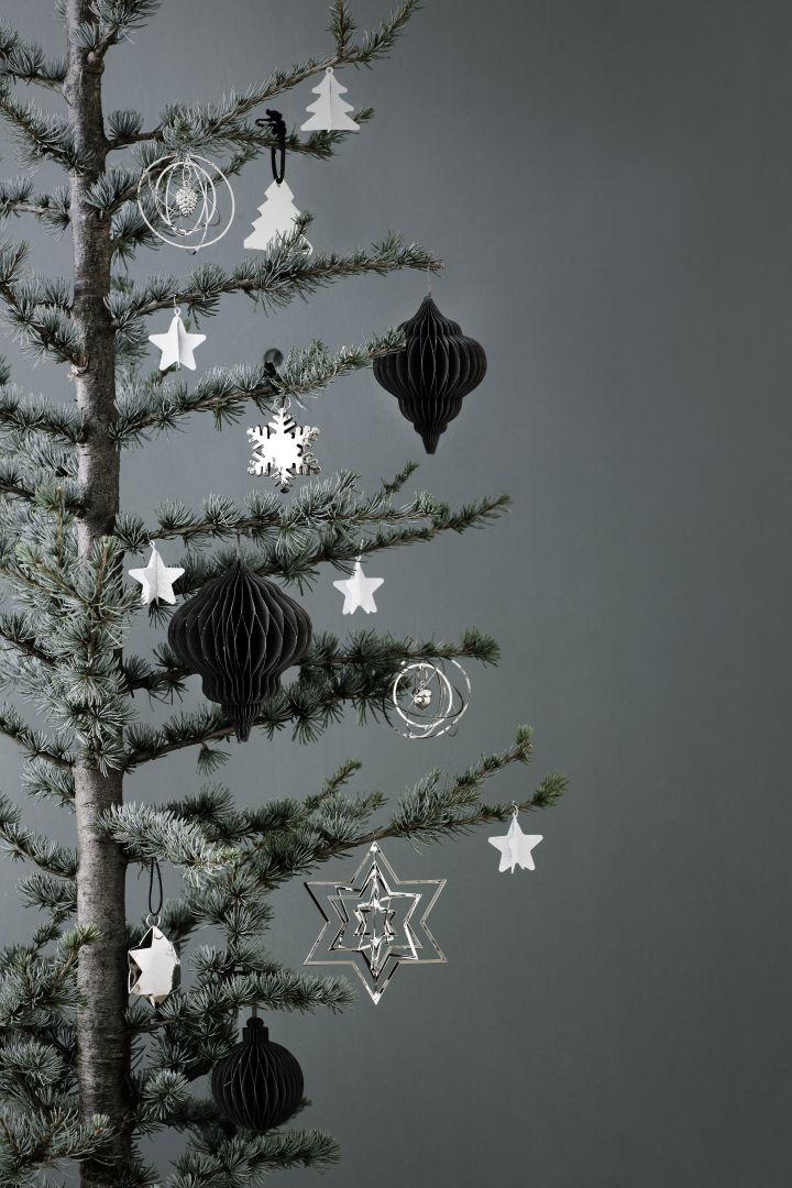 De nieuwe PTMD kerstcollectie