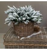 GeWoon Besneeuwde wintertak - 60 cm