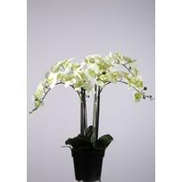 Orchidee Wit - Ø20xH75 cm
