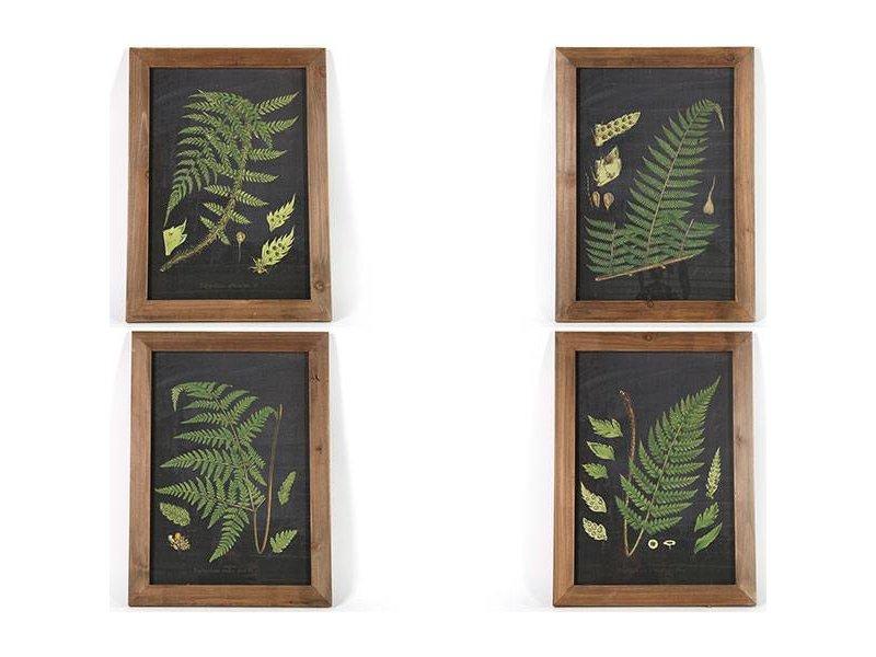 Countryfield Schilderij Varens - 40x2xH55 cm