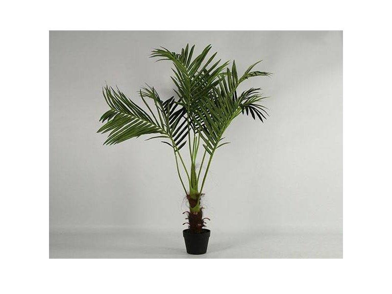 Countryfield Palmboom Phoenix Groen - Ø60xH115 cm