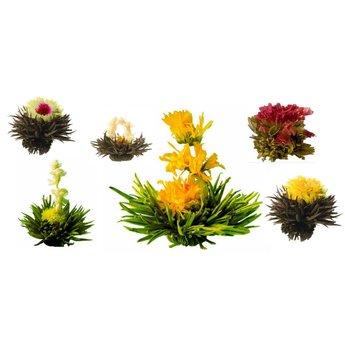 Boite de Luxe Contenant 6 Fleurs de Thé