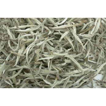 Thé blanc Himalaya Silver Needle  première récolte 2016