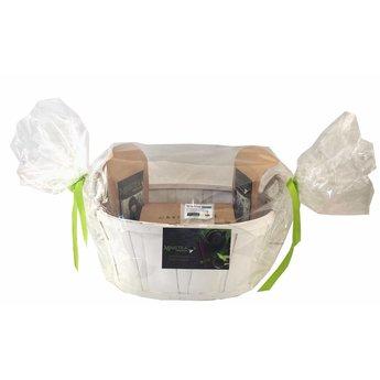 Coffret cadeau panier cellophane: 2 thés BIO + 1 Fleurs de thé + verre à thé 300ml