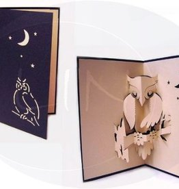 Pop up birthday card, owl in the night