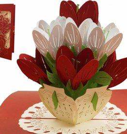 Pop Up 3D Karte - Geburtstagskarten, Muttertag Glückwunsch, Bunte Blumen, N720