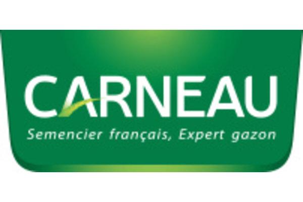 Carneau