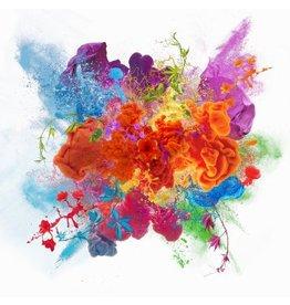 Explosion - Fotografische Kunst