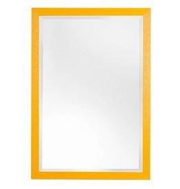 Roses - sfeervolle betaalbare spiegel met gele lijst