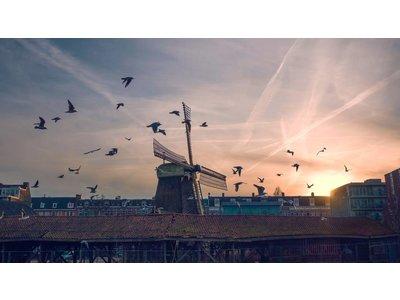 Amsterdam by Vincent Versluis