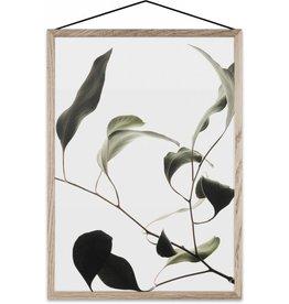 Floating Leaves (#9) compleet met lijst en glas