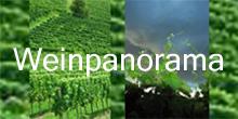 Weinpanorama