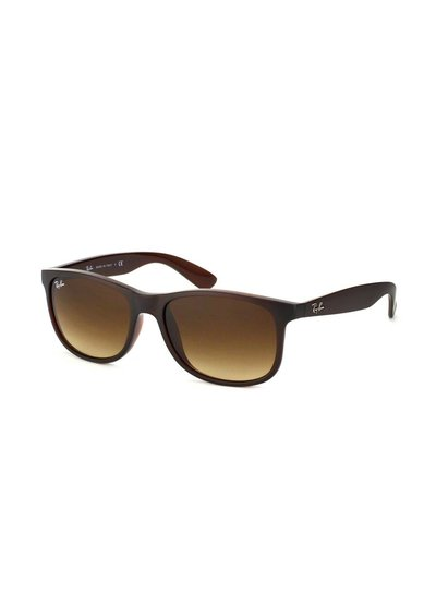 Ray-Ban Andy - RB4202 607313 | Ray-Ban Zonnebrillen | Fuva.nl