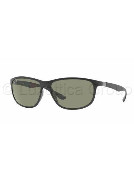 Ray-Ban RB4213 - 601S9A Gepolariseerd