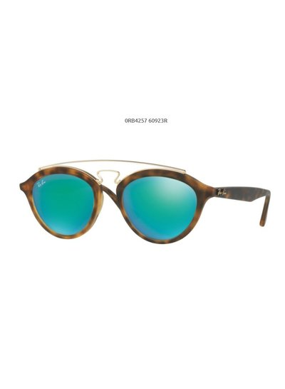 Ray-Ban RB4257 - 60923R | Ray-Ban Zonnebrillen | Fuva.nl