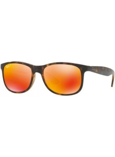 Ray-Ban Andy - RB4202 710/S6 | Ray-Ban Zonnebrillen | Fuva.nl