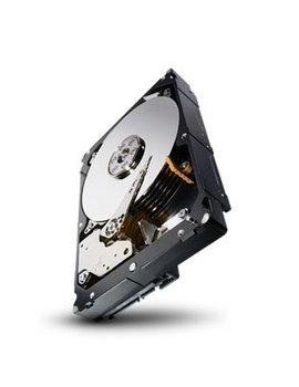 "Seagate 3TB 7.200 rpm 3.5"" SAS Enterprise Capacity"