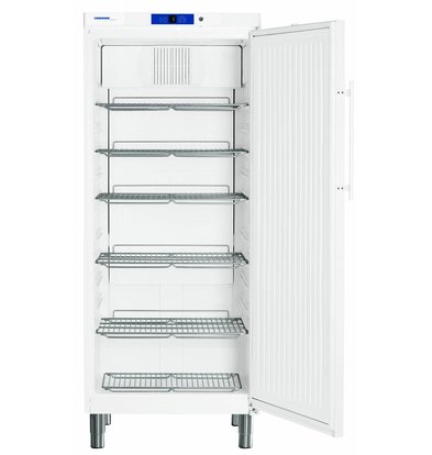 Liebherr White Refrigerator Gastronomy at Paws | Liebherr | 583 Liter | 2 / 1GN | GKN 5730 | 75x75x (h) 186cm