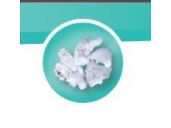 Diamond Grain Ice machine - 250kg / 24h - without storage - ICE250MAS