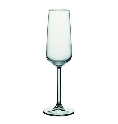 XXLselect Champagne-Glas Allegra | 195 ml | Ø45x226 (h) mm | Pro 24 Stück