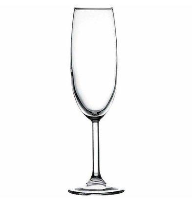 XXLselect Champagne-Glas Primetime | 165ml | Ø64x205 (h) mm | Pro 24 Stück