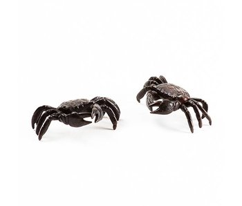 Set van 2 krabben