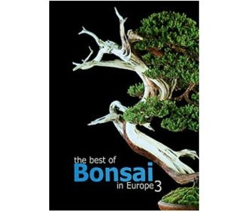 The best of Bonsai in Europe # 3