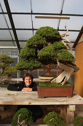 About Bonsai Plaza - Maarten van der Hoeven