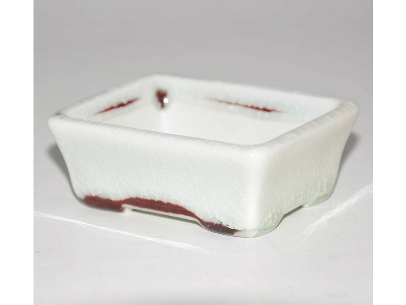 Bonsai pot white 8 cm