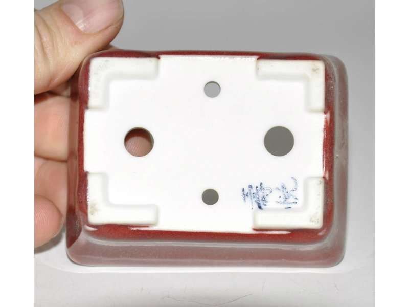 Bonsai Topf rot 8 cm