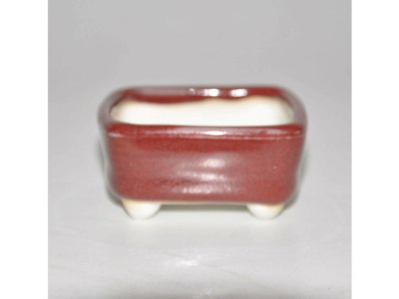 Bonsai pot 5,5 cm rosso