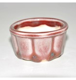 Bonsai pot red 5,5 cm