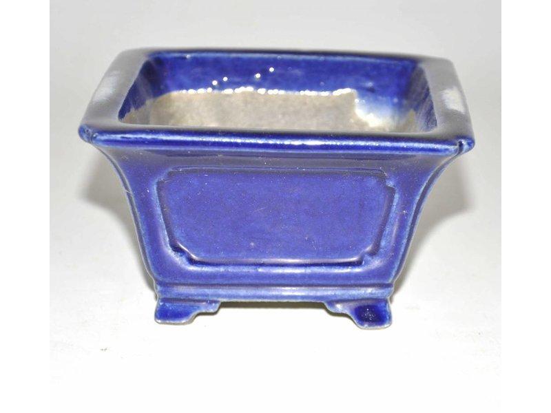 bonsai azul rectangular