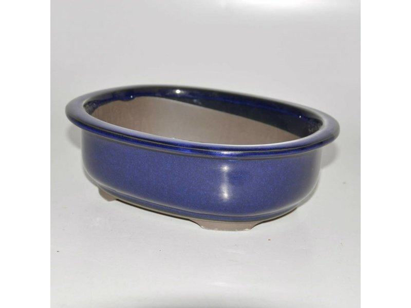 Bonsai pot blue 20,5 cm Seto Yaki