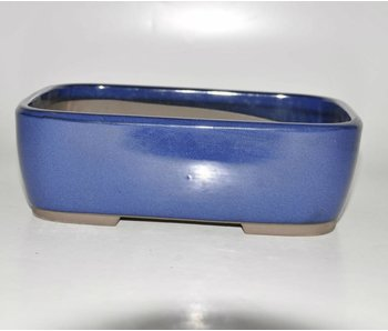 Bonsai pot blue 25 cm Seto Yaki