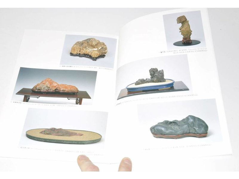 Exhibition of Japanese Suiseki masterpieces 2000