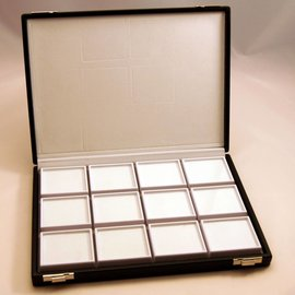 Gemstone case with 12 boxes (45901NH)
