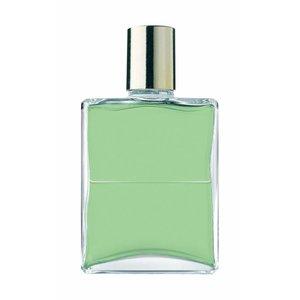 Aura-Soma Aura-Soma B053 L. Groen / L. Groen 50 ml