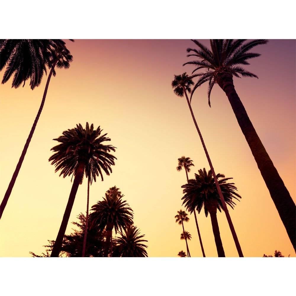Erik Palmer Brown Wallpaper: Fotobehang California Palm Boom 315 X 232 Cm