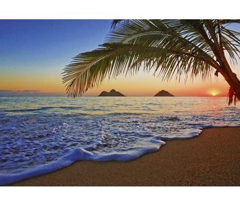 Fotobehang Pacific Sunrise 366x254 cm