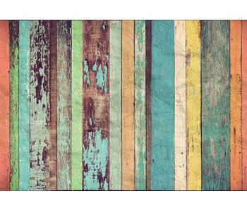Fotobehang Farbige Holzwand 366x254 cm