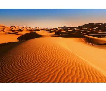 Fotobehang Wüsten-Landschaft 366x254 cm