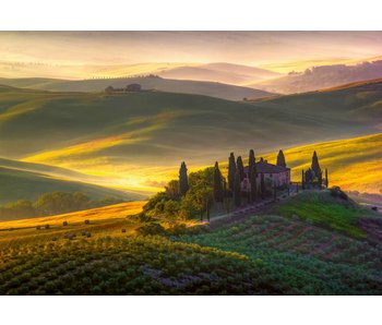 Fotobehang Toscana 366x254 cm
