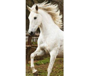 Animal Pictures Beachtowel White Horse 70x140cm
